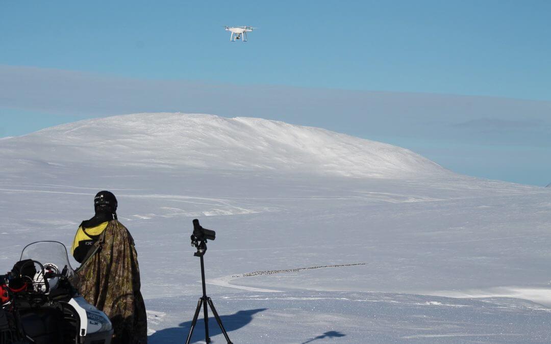Drone som alternativ til flytelling